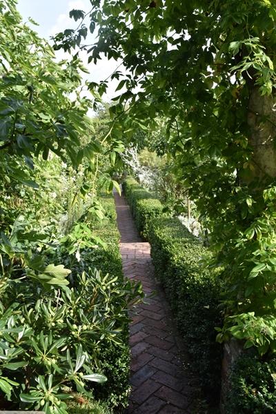 m_White garden (16).jpg