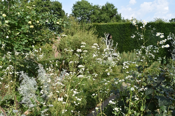 m_White garden (18).jpg
