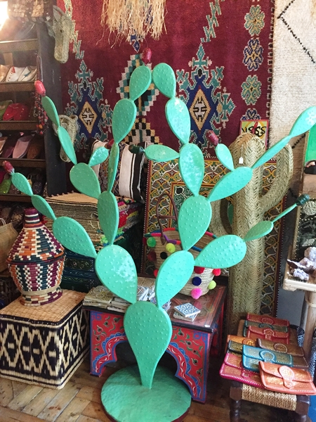 Fez Bazaar - every home needs one of these cacti !!!
