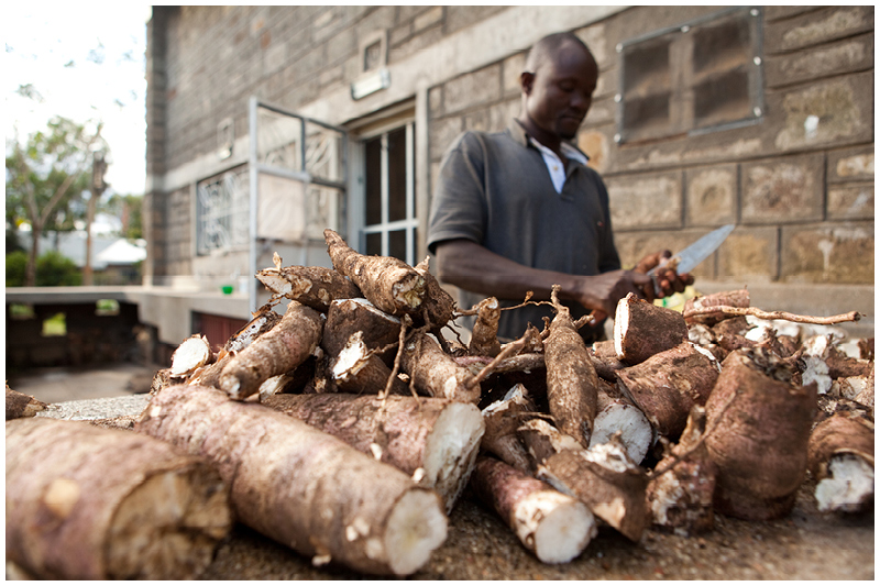 Eric prepares cassava, a root vegetable for eating.