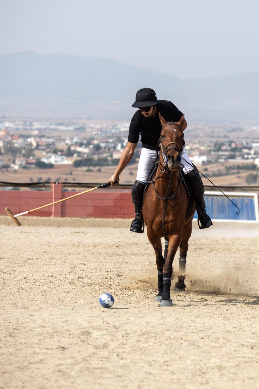 Polo©AndreasPoupoutsis (2 of 52)-min.jpg