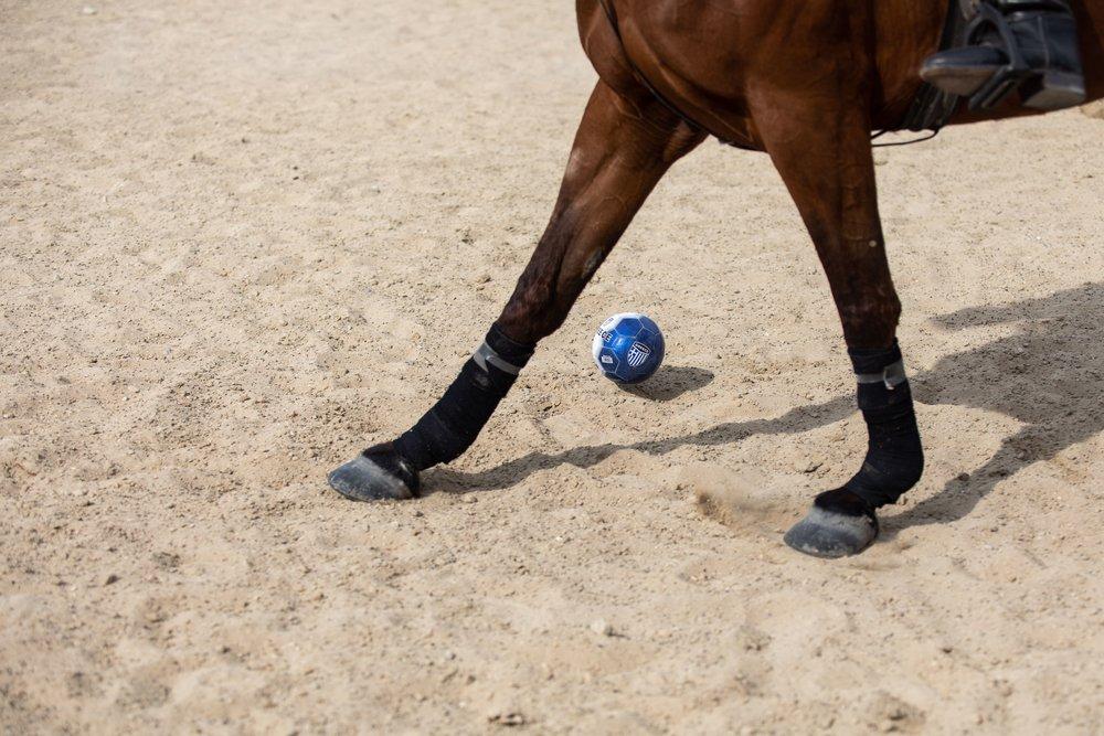 Polo©AndreasPoupoutsis (19 of 52)-min.jpg