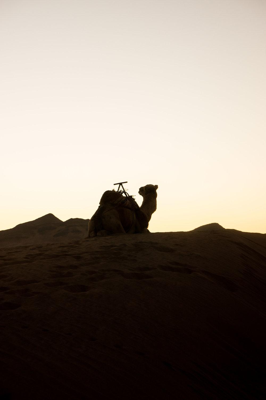 Morocco©Andreas Poupoutsis-72-min.jpg