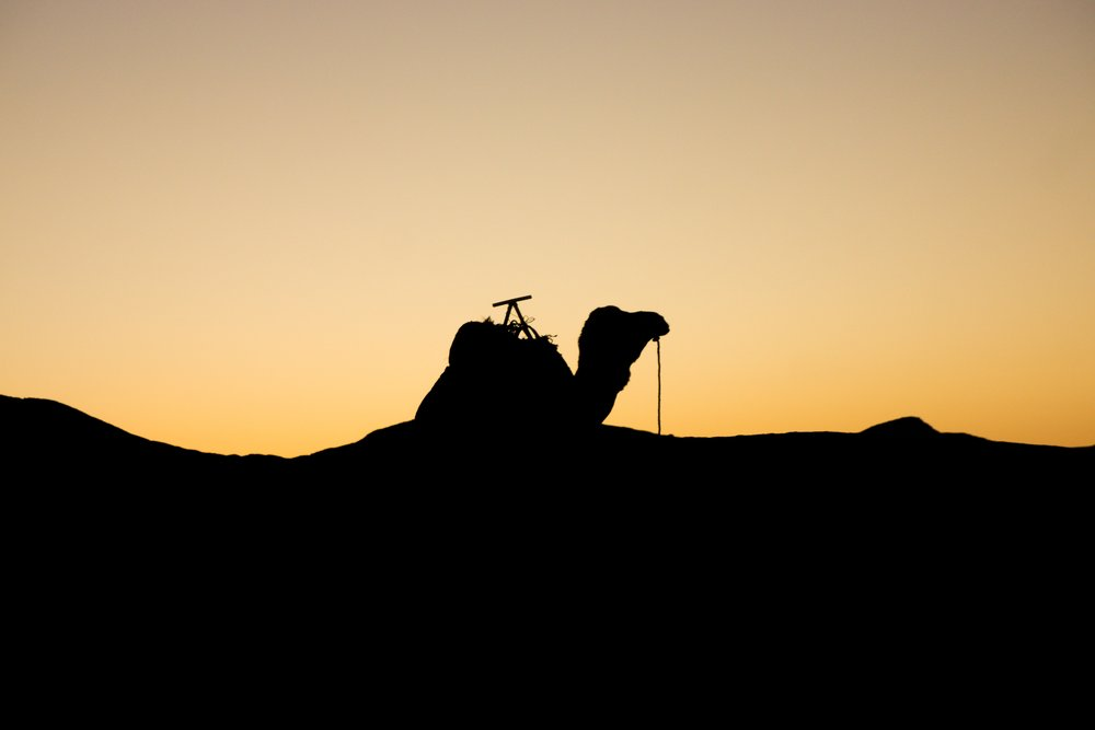 Morocco©Andreas Poupoutsis-75-min.jpg
