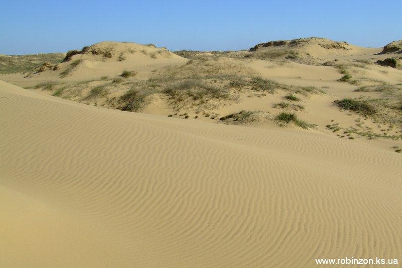 Олешківська пустеля з'явилася через величезні отари овець, які з'їли всю траву, залишивши один пісок