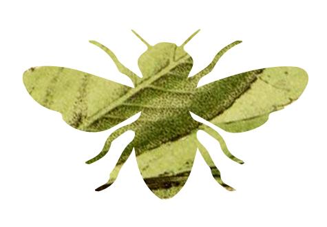 Bee Logo.jpg