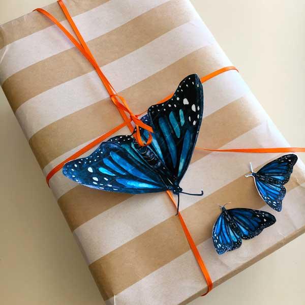 butterfly2-11.jpg
