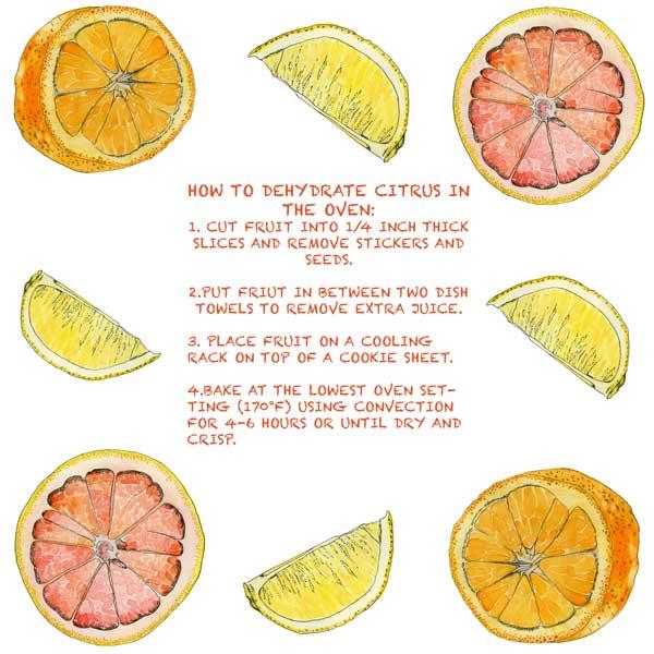citrus-15.jpg