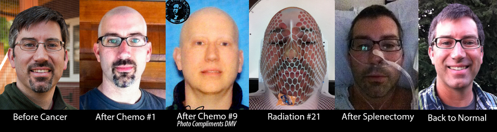 A year of cancer selfies, except for that one in the middle taken by the Department of Motor Vehicles.