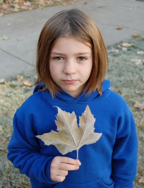 Child leaf opt