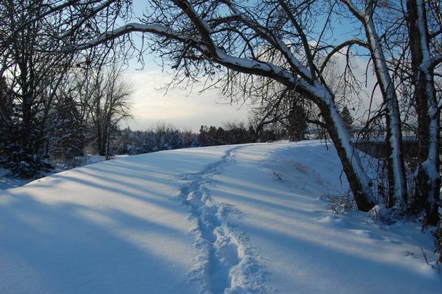 Centenniel trail