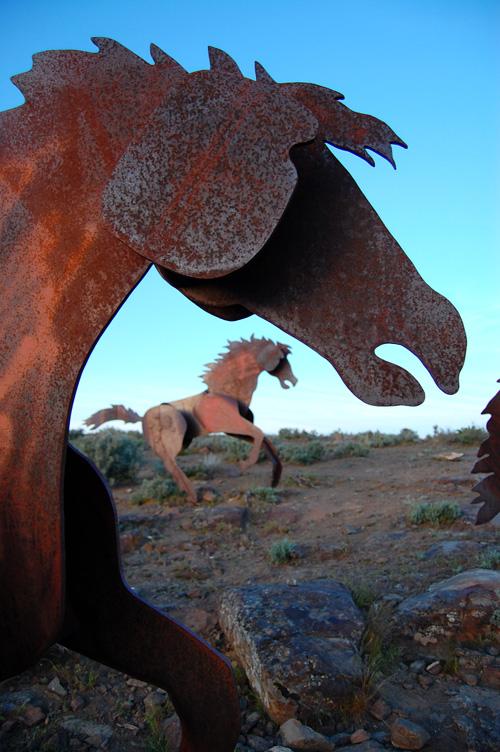 Wildhorse1