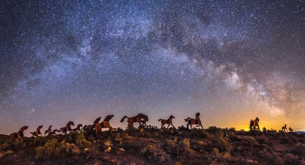 wild horses-1-2.jpg