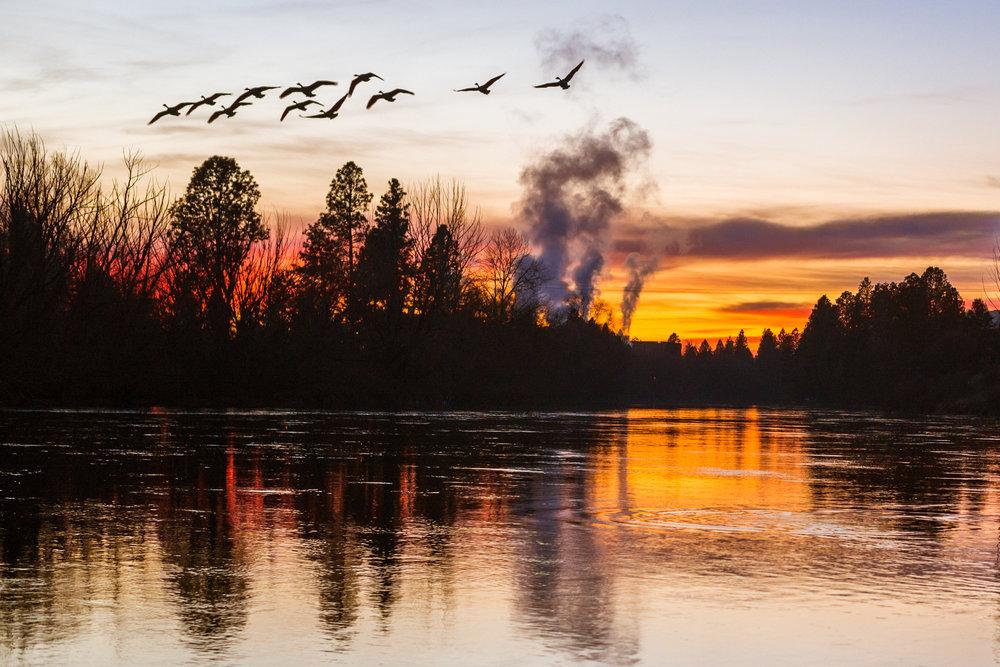river-1-5.jpg