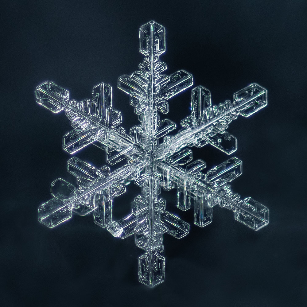 snowflake photography sample-3.jpg