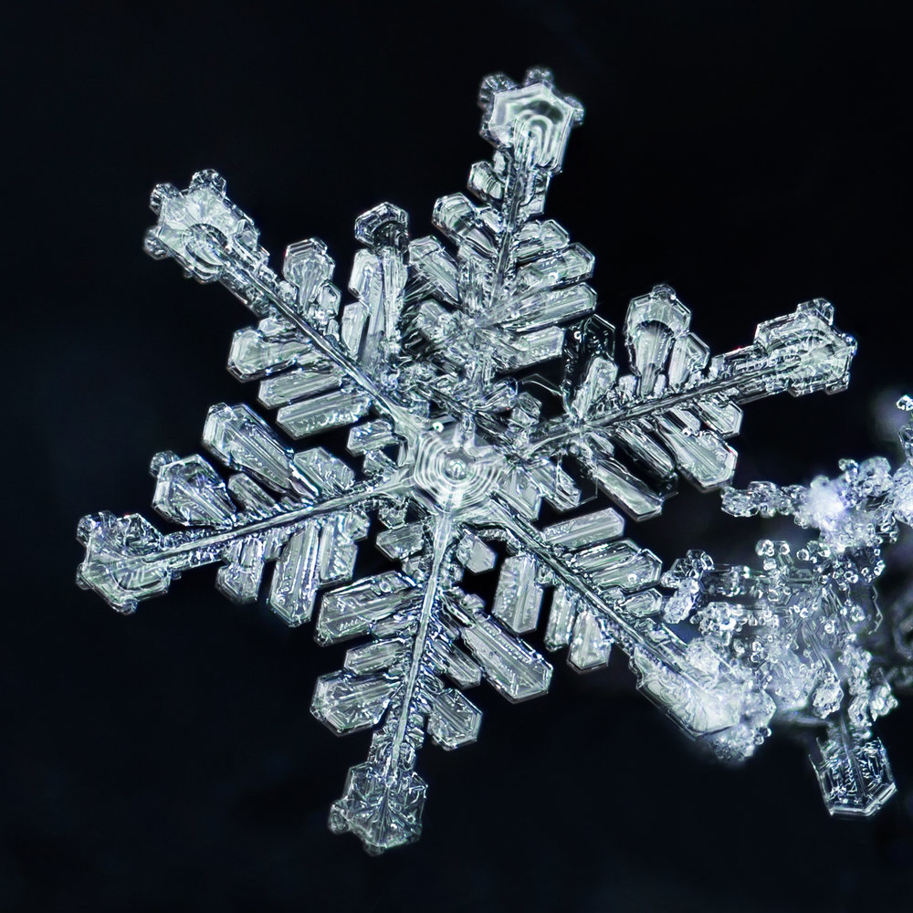 snowflake photography sample 1-8.jpg