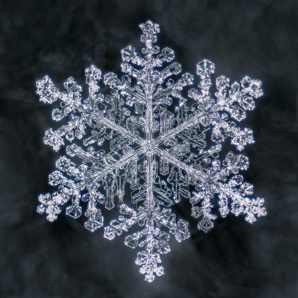 snowflakes-2.jpg