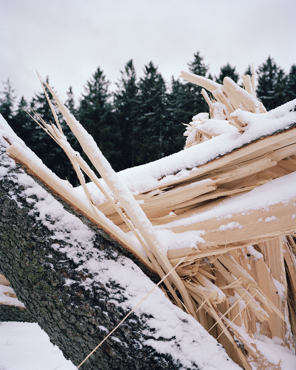 Winter_Harz_11_v1.jpg