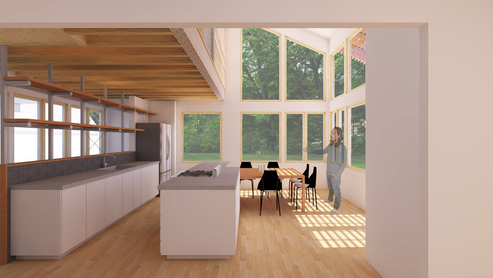 ©StructRestruct_render_kitchen9 copy.jpg