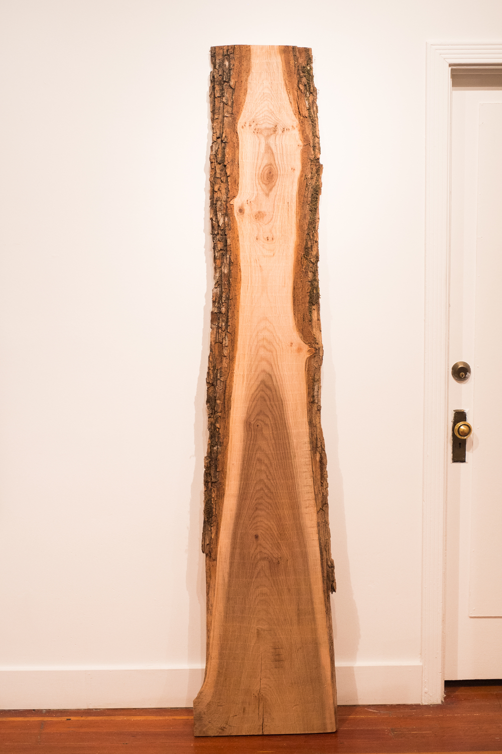 "One After Another ,    2014    Heather Engen    White Elm    7' x 16"" x 3"""