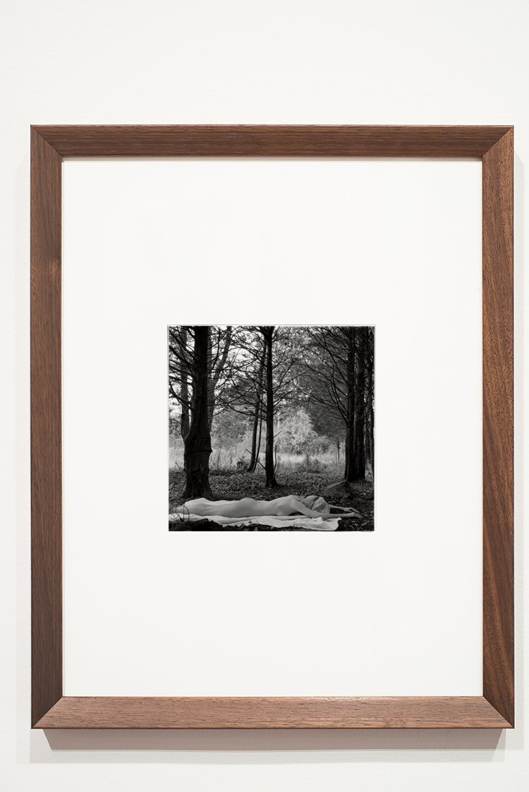 "peel back layers: something may be left inside,  2014   John Ciamillo  Gelatin Silver prints  11"" x 14"" framed"