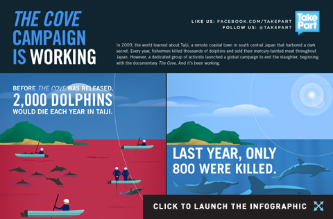cove_infographic_thumb_480x315