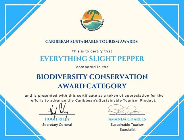 MASSIVE thank you to the Caribbean Tourism Organisation (@ctotourism) for recognizing our work with @islandbabieshq in environmental education. The journey that we embarked on can feel so daunting and almost hopeless at times, like we're not making a dent into affecting behavior... we really really really appreciate that getting recognition and the much needed encouragement to keep going!