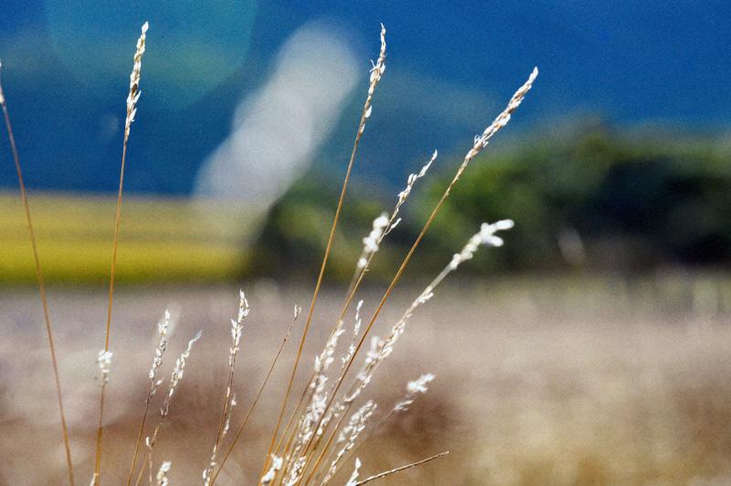 kate-deagan-landscapes (19).jpg