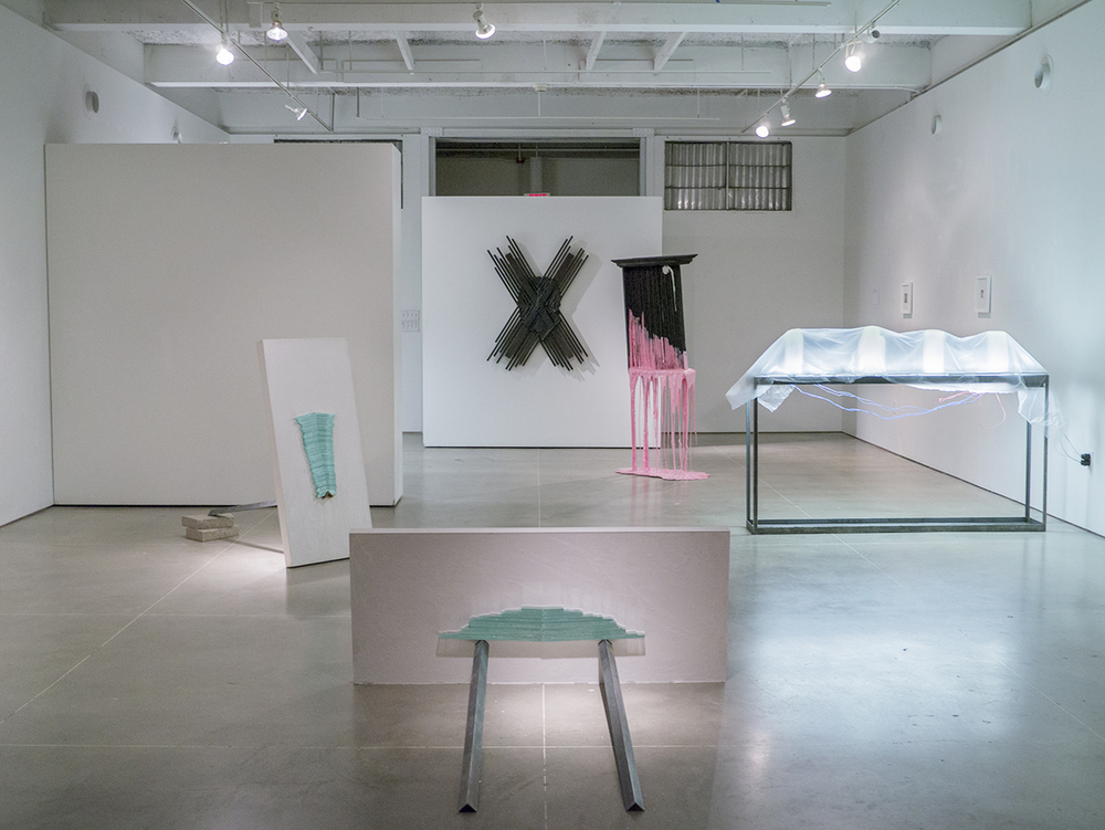 Constituent Crimes   2015  installation view