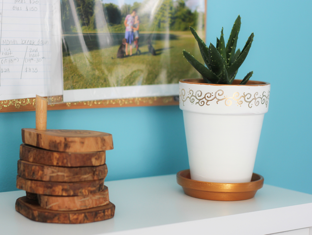 Awesome bamboo coasters and my Aloe plant named Spike.