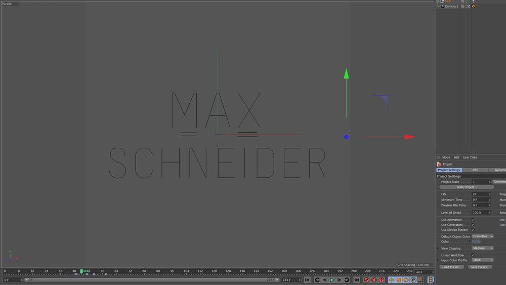 Max Schneider Process