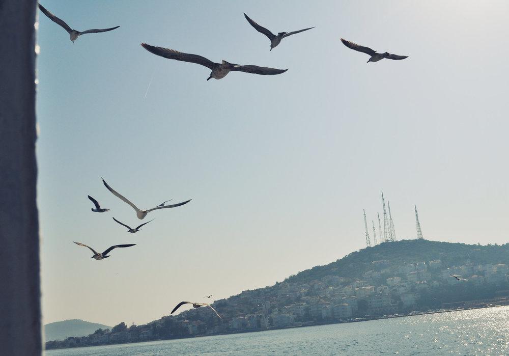 Istanbul, Turkey, digital