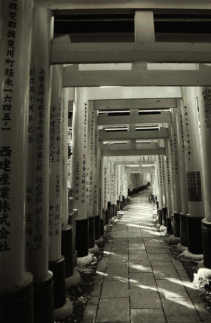 Torii Gates, Kyoto, Japen, film