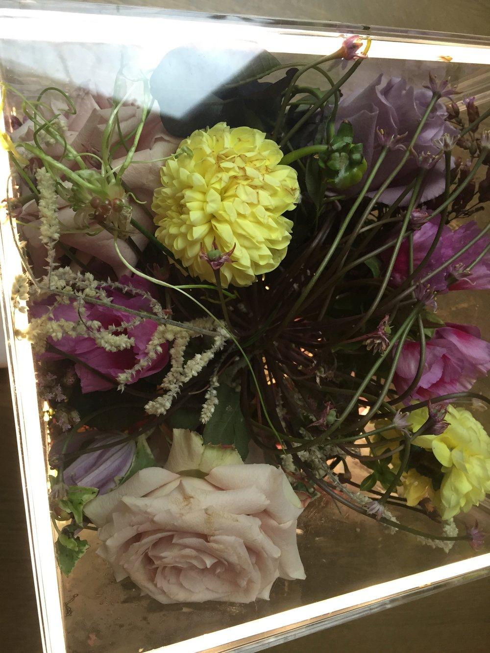 FLOWERS AGAINST LUCITE