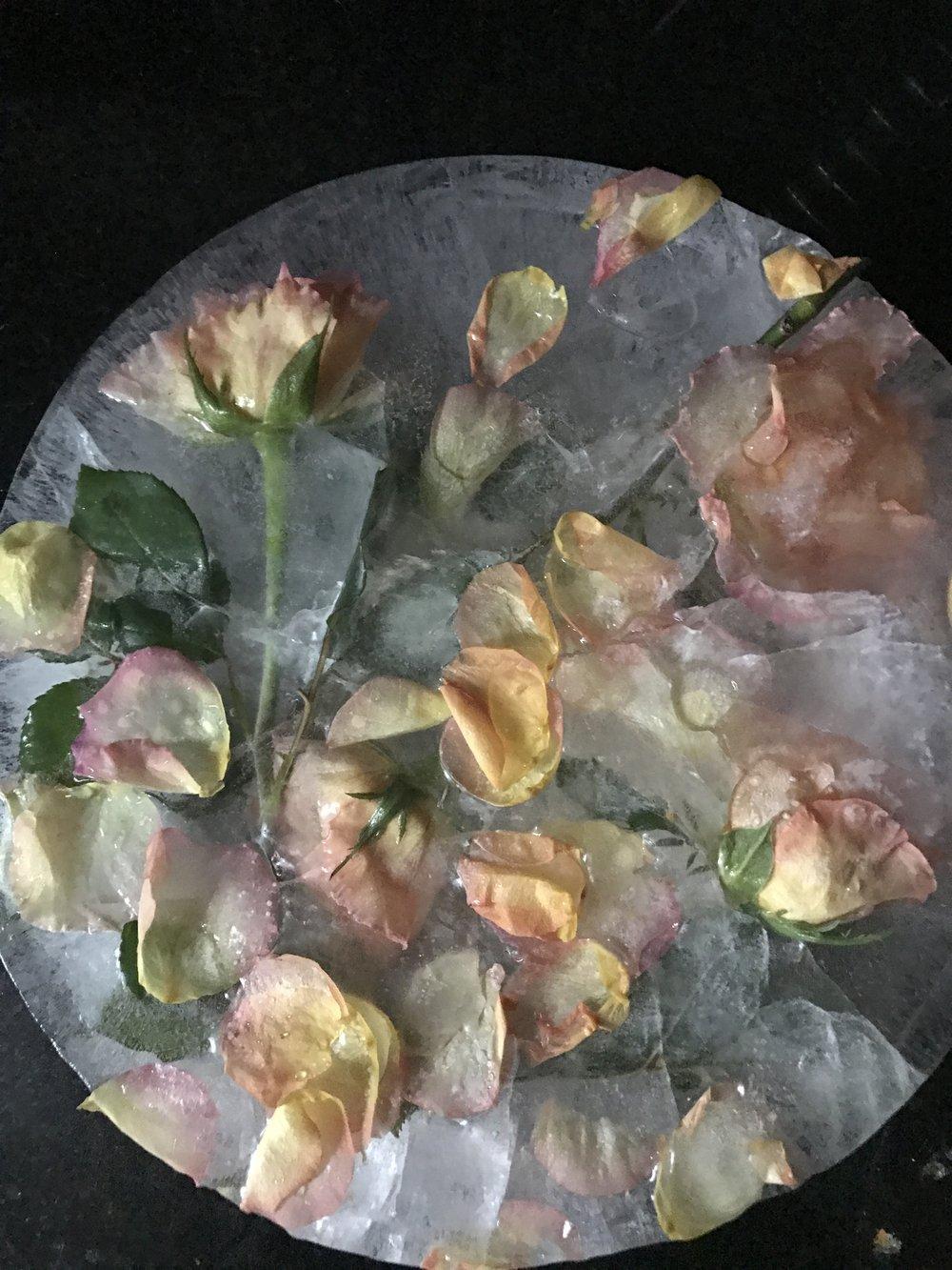 ROSE FLOWER ICE