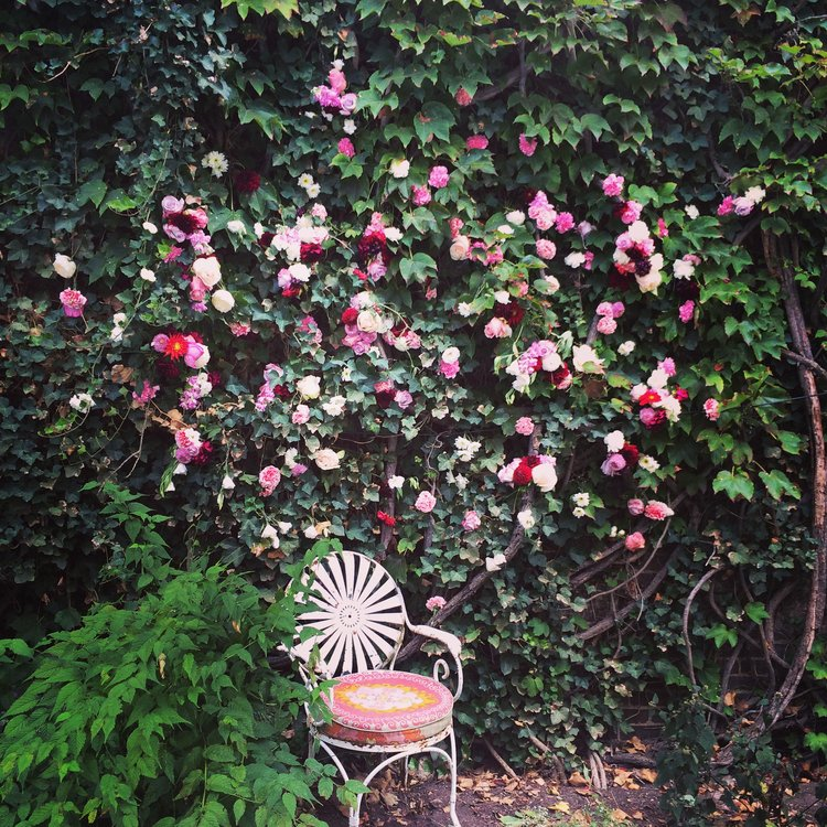 flowerwall2.jpeg