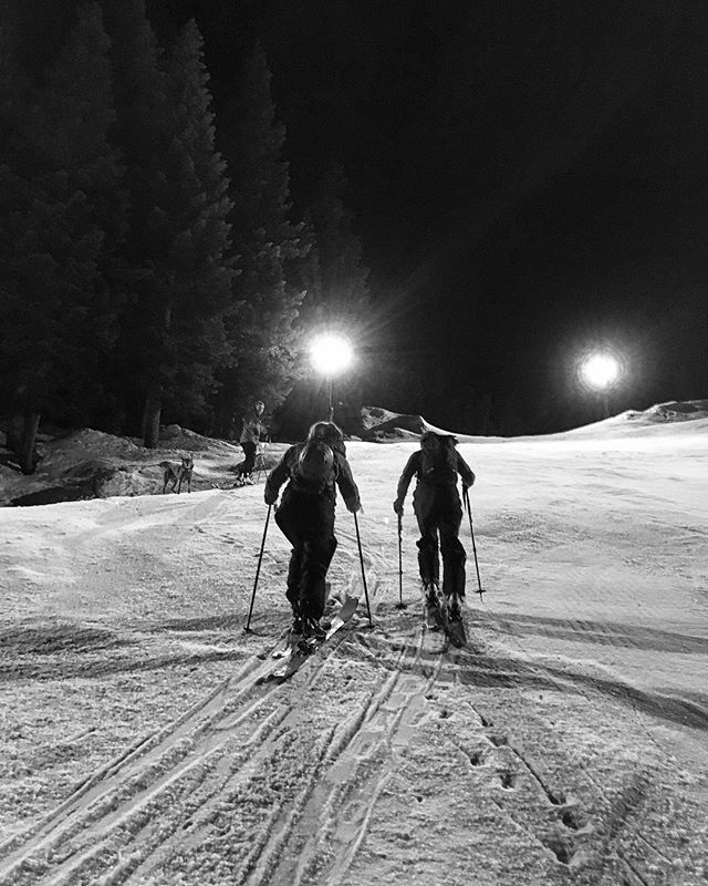 Fun night shredding up-n-downs with @malpinist at Summit Central! Wilson got his laps in too! // #skiuphill #skidog #summitatsnoqualmie #livemore #gottagetuptogetdown #skiing