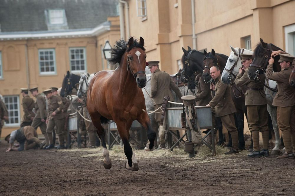 This movie made us cry way too much. War horses were incredible.