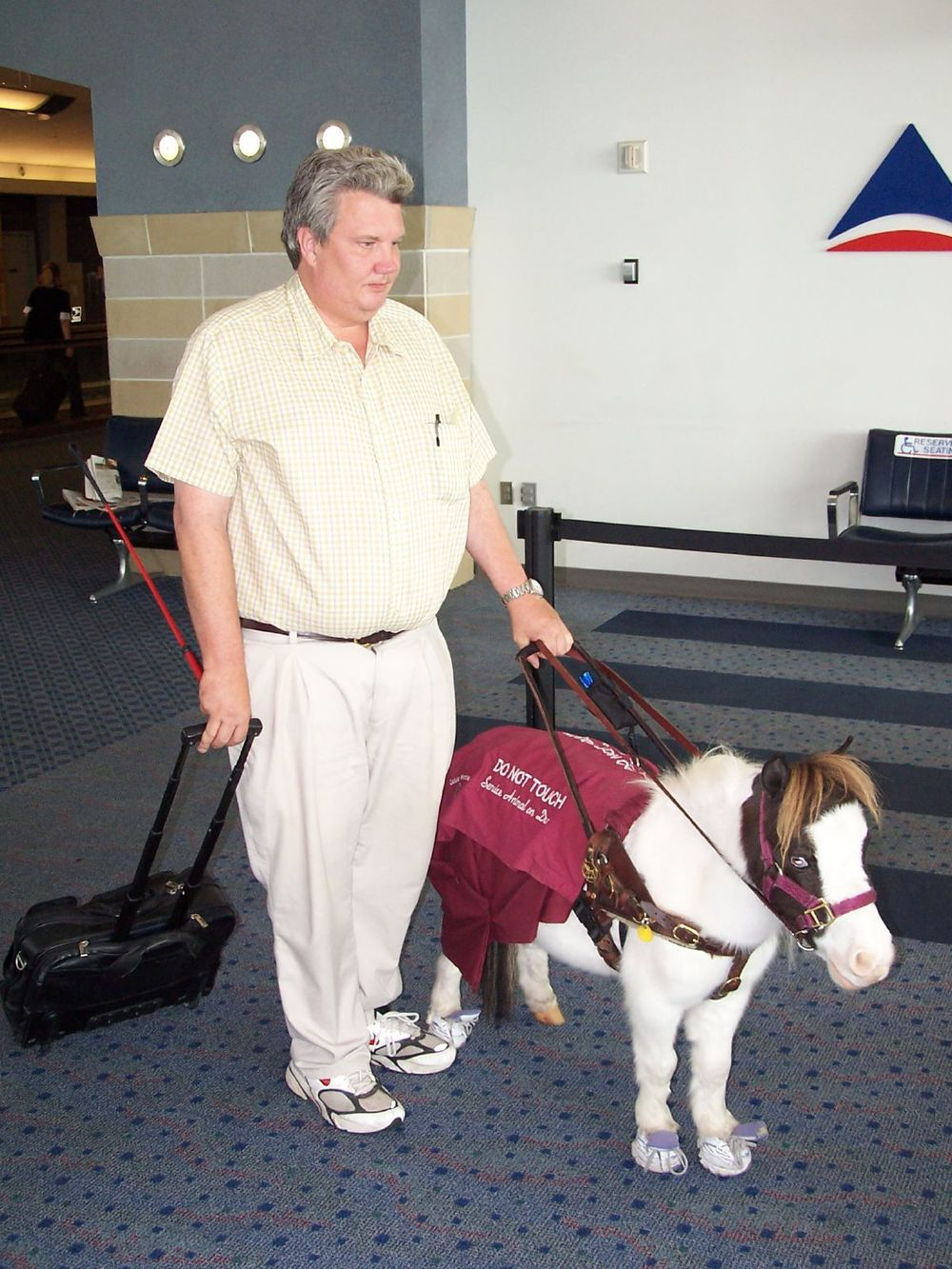 Shout out to the service animals (ponies included!) of the world!