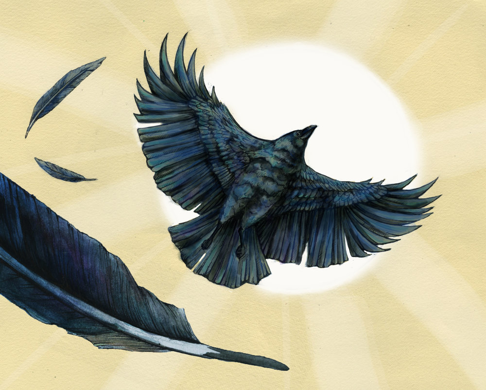 """""""CROW BRINGS THE DAYLIGHT"""", A NATIVE AMERICAN TALE."""