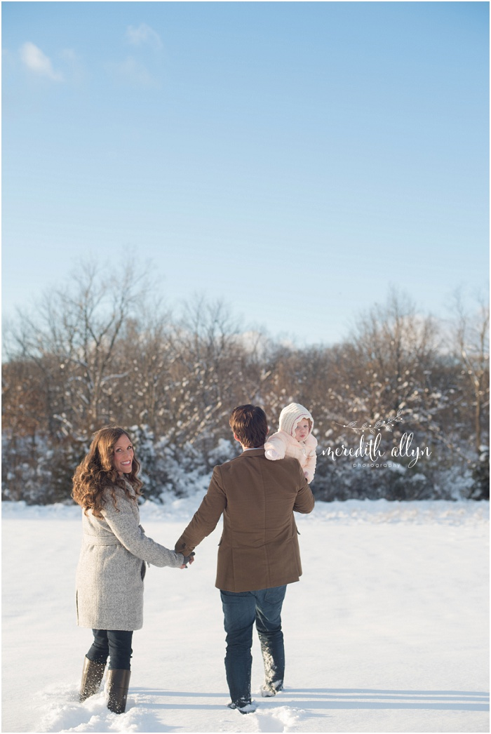 ann arbor family session