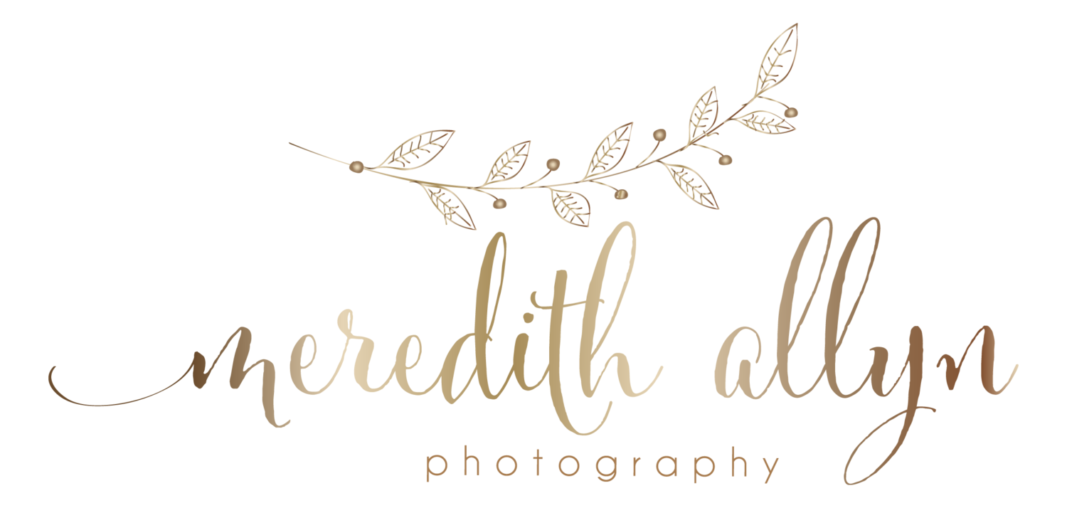 Meredith Allyn Photography