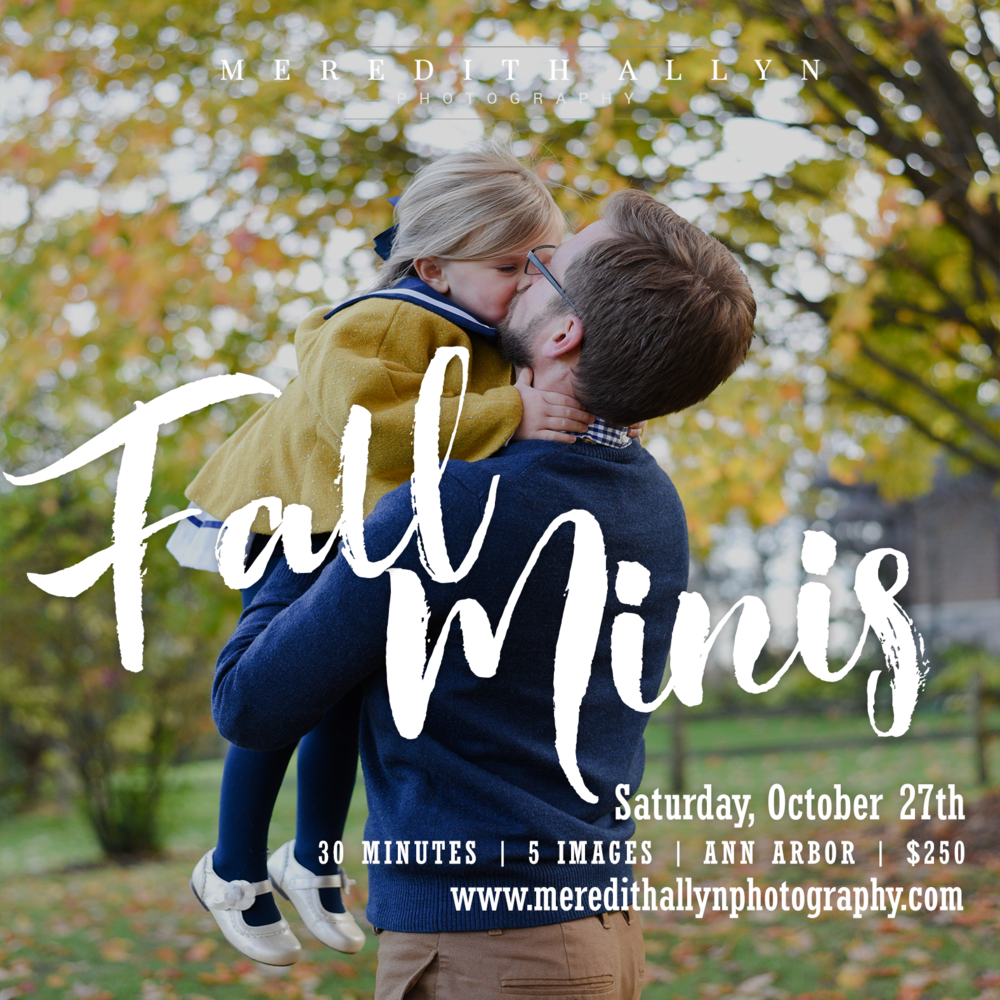 Meredith Allyn Photography Fall Mini Session 2018.png