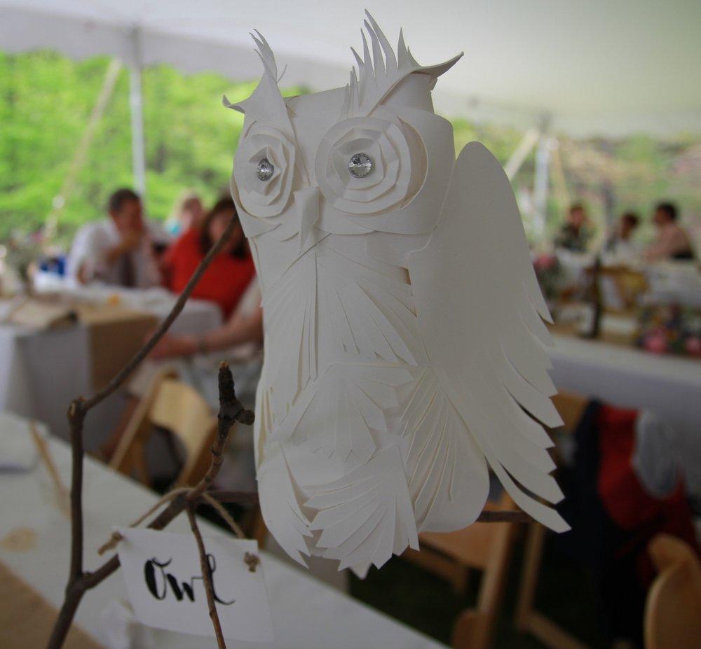 Owl+1andrew.jpg