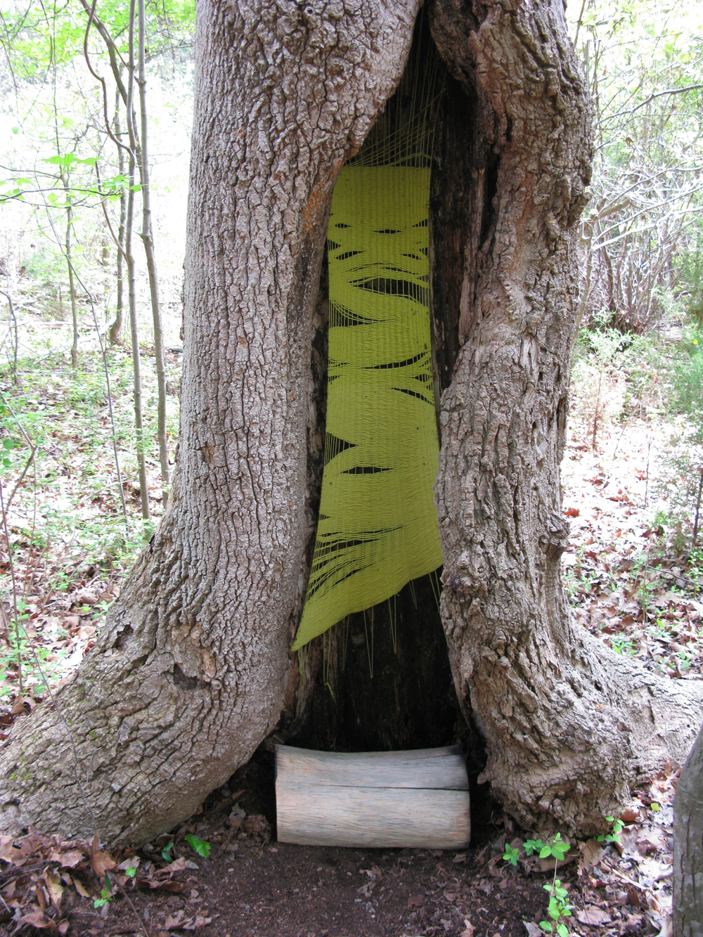 Warp, Weft, and Counterweight  Temporary installation, Davidson College Ecological Preserve  2012
