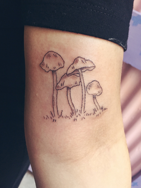 Mushrooms on Chantelle