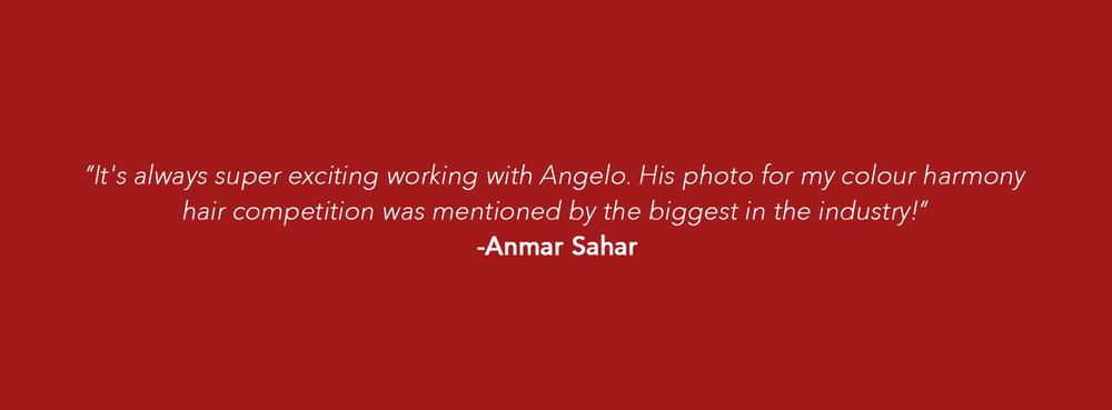anmar_headings.jpg