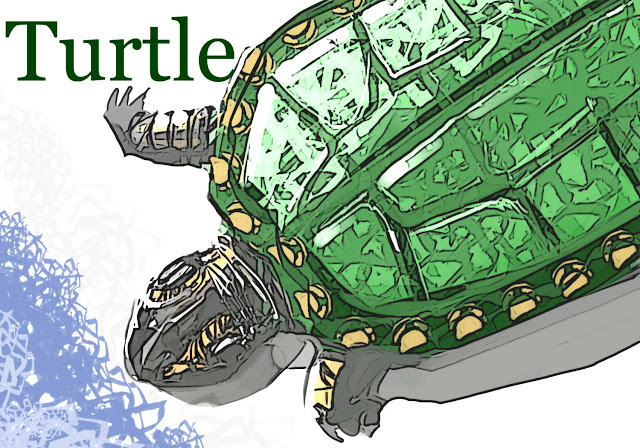 turtles-color-1op.jpg