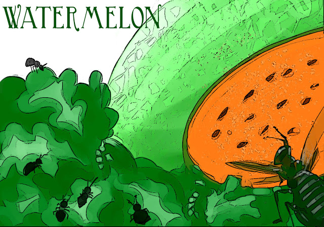 watermelon-color-fin-op.jpg
