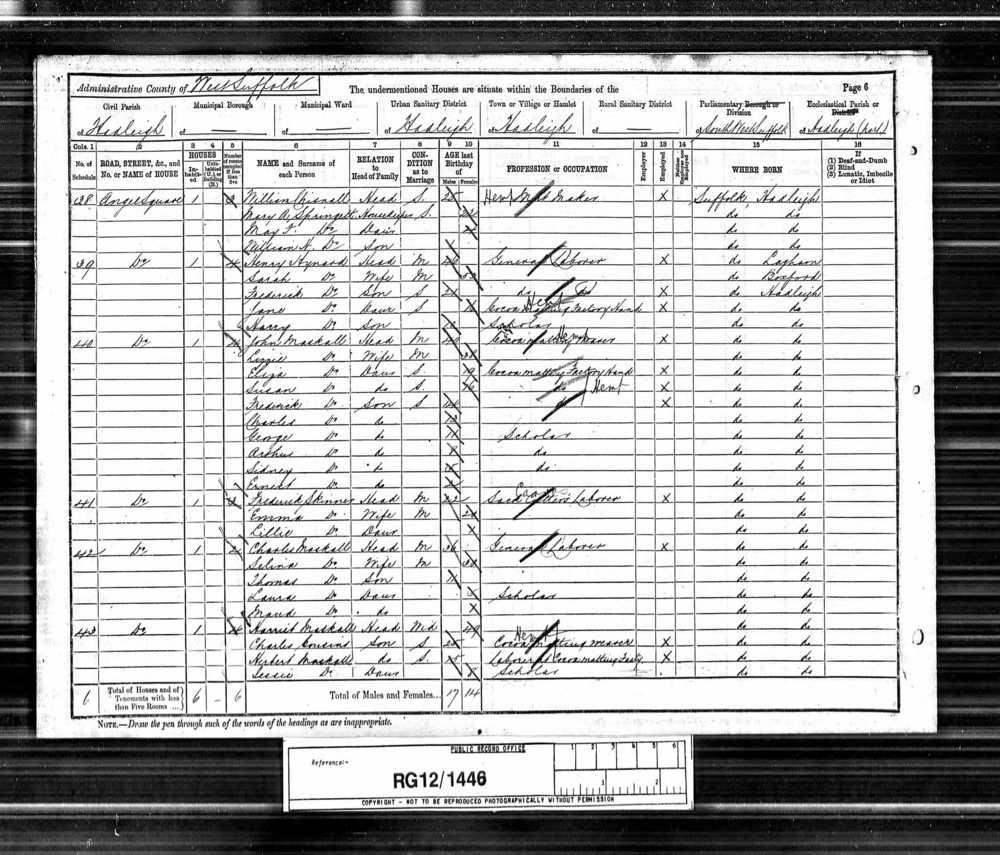 1891 Census Maskell A.jpg